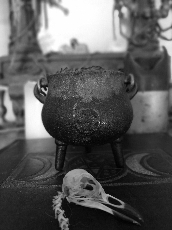 a cauldron and a bird skull sat on an altar.